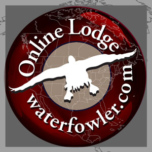 Lodge Avatar