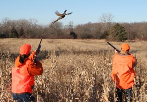 Youth Pheasant Hunt - (c) 2012 Darin Sakas
