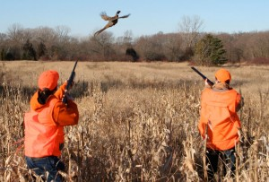 Youth Pheasant Hunt © 2011 Darin M Sakas