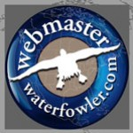 Profile picture of Webmaster